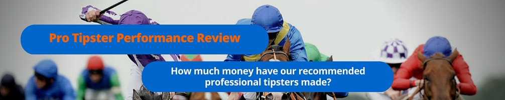 Professional Tipster Portfolio Results