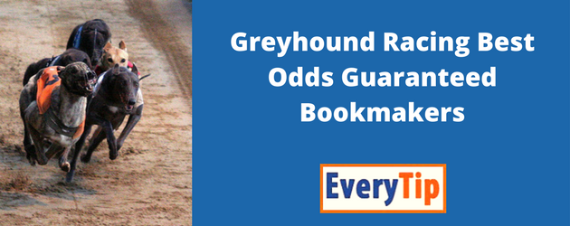 Greyhound Racing Best Odds Guaranteed Bookies