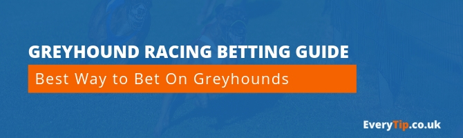 best way to bet on greyhounds - everytip betting guide